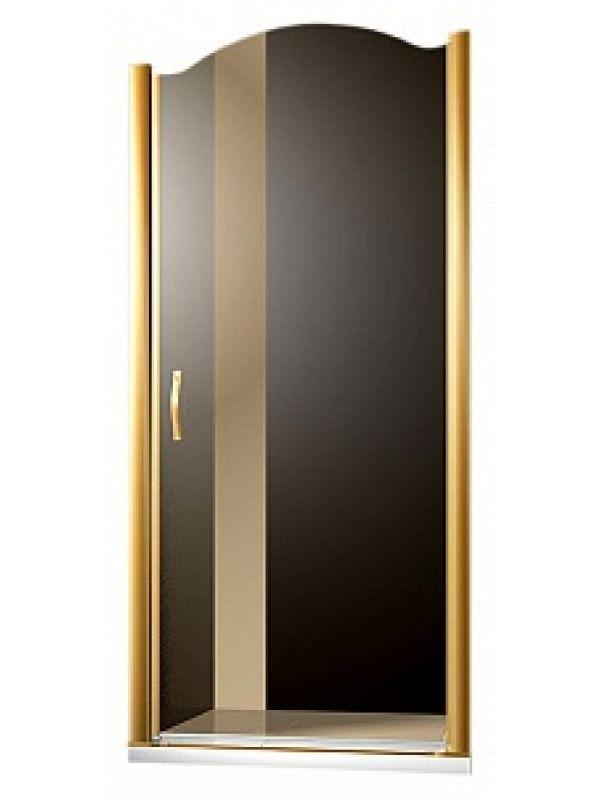 Душевая дверь