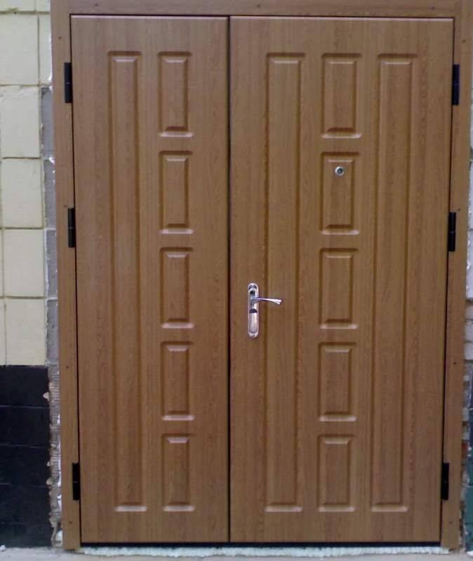 Металлическая двойная дверь